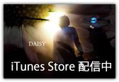 iTunes Store 配信中 <DAISY>